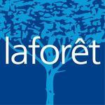 LAFORET - Arbousier Immobilier